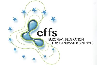 logo EFFS